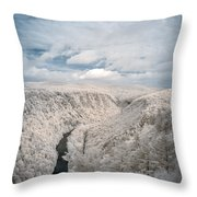 Grand Canyon Of Pa In Infrared Throw Pillow