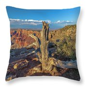 Grand Canyon Old Tree Throw Pillow