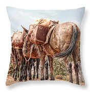 Grand Canyon Pack Mules Throw Pillow