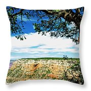 Grand Canyon View From South Rim Overlook Throw Pillow