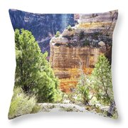 Grand Canyon16 Throw Pillow