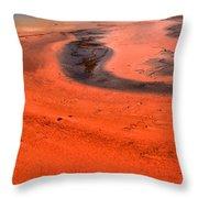 Grand Prismatic Swirls Throw Pillow