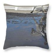 Grand Prix Reflected Throw Pillow