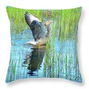 Grand Spring Goose   Throw Pillow