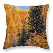 Grand Teton Fall Throw Pillow
