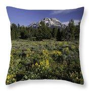 Grand Teton Mule's Ears Throw Pillow