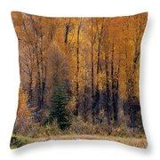 Grand Tetons Fall Throw Pillow