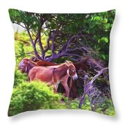 Grand Turk Donkeys In The Shade Throw Pillow