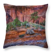 Grand Wash - Capitol Reef Throw Pillow