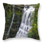 Grandaddy Burgess Throw Pillow
