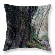 Grandfather Tree. Throw Pillow