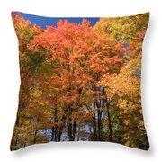 Grandma Red's Woods Throw Pillow