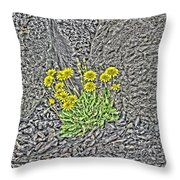 Granite And Grace Throw Pillow