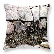 Granite And Seaweed Throw Pillow