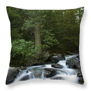 Granite Creek Throw Pillow