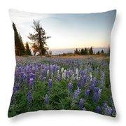 Granite Mountains Sunrise Throw Pillow