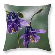 Granny's Purple Bonnet  Throw Pillow