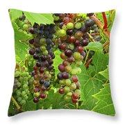 Grape Harvest Throw Pillow