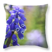Grape Hyacinth II Throw Pillow