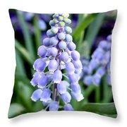 Grape Hyacinths Closeup Throw Pillow