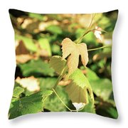 Grape Vine 3 Throw Pillow