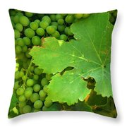 Grape Vine Heavy With Green Grapes Throw Pillow