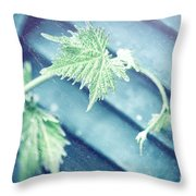 Grape Vine Old Style Background Throw Pillow