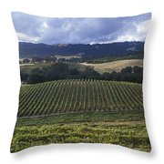 Grape Vines On Opolo Vineyards Throw Pillow by Rich Reid
