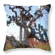 Grapes Aloft Throw Pillow