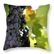Grapes Throw Pillow by Nancy Ingersoll