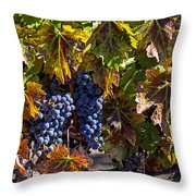 Grapes Of The Napa Valley Throw Pillow