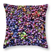 Wine Before It's Time Throw Pillow