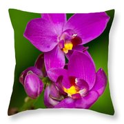 Grapette Ground Orchid Throw Pillow