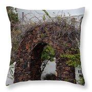 Grapevine Covered Stone Garden Door Throw Pillow