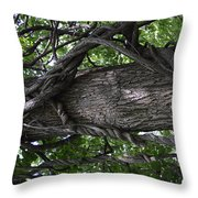 Grapevine Covered Tree Throw Pillow
