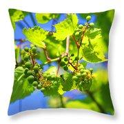 Grapevine Throw Pillow