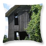 Grapevine Mansion Throw Pillow