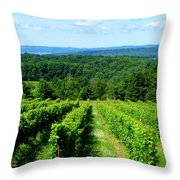 Grapevines On Old Mission Peninsula - Traverse City Michigan Throw Pillow