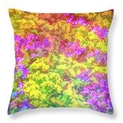 Graphic Rainbow Colorful Garden Throw Pillow