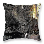 Graphics 1 Throw Pillow