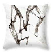 Graphics 1325 Throw Pillow