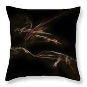 Graphics 1617 Throw Pillow