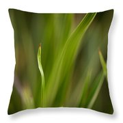Grass Abstract 1 Throw Pillow by Mike Reid