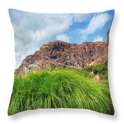 Grass Along John Day River In Central Oregon Throw Pillow