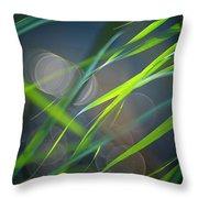 Grass And Evening Light Throw Pillow