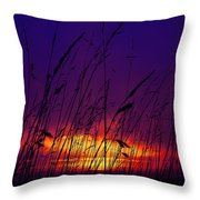 Grass At Dusk Throw Pillow