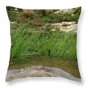 Grass Blades In Water Throw Pillow