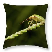 Grass Bridge Throw Pillow