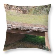 Grass Bridge Throw Pillow