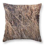 Grass Detail Throw Pillow